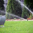 Garden automatic irrigation system, working sprinkler — Fotografia Stock  #67302689