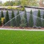 Garden automatic irrigation system, working sprinkler — Stock Photo #67302767