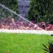 Garden automatic irrigation system, working sprinkler — Stock Photo #67302785