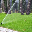 Garden automatic irrigation system, working sprinkler — Stock Photo #67302789