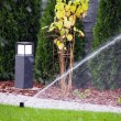 Garden automatic irrigation system, working sprinkler — Stock Photo #67302791