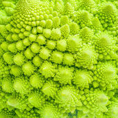 Broccoli close up texture fractal background — Stock Photo