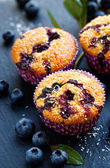 Blueberry muffins with addition of coconut flakes. Delicious dessert — Stock Photo