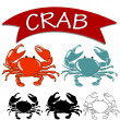 Cooked crab and live crab isolated on white background. — Stock Vector #72007337