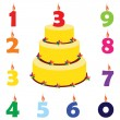 Birthday cake with candles — Stock Vector #74497845