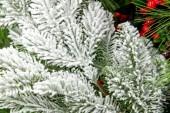 Christmas decorations - tree branch — Zdjęcie stockowe