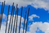 Construction rebar against a cloudy blue sky — Stockfoto