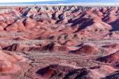 December 21, 2014 - Petrified Forest, AZ, USA — Stock Photo