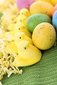 着色イースターエッグと黄色の雛 — ストック写真
