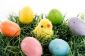 Colored Easter eggs and yellow chick on grass — Stock Photo