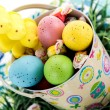 Easter bucket with colored eggs, candy and yellow chicks — Stock Photo #67721457