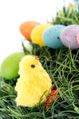 Colored Easter eggs and chick in grass — Stock Photo