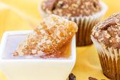 Honig-Rosine-Kleie-muffins — Stockfoto
