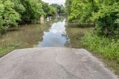 2015 年 5 月 30 日 - アディックス貯水池公園、ヒューストン, テキサス州: 立っている flo — ストック写真