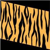 Tiger Stripes — Stock Photo