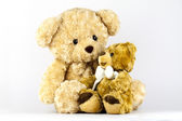 Two little bears — Stockfoto
