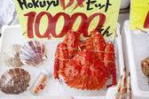 Crap of Hakodate — Stock Photo