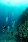 Divers and the meno wall in Gili, Lombok, Nusa Tenggara Barat, Indonesia underwater photo — Stock Photo