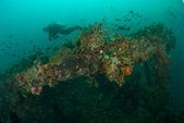Diver, boat wreck in Ambon, Maluku, Indonesia underwater photo — Stock Photo