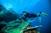Diver take a photo video upon coral kapoposang indonesia scuba diving — Stock Photo