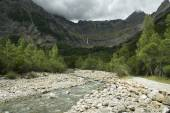 River between mountains, Pyrenees, Spain — Stock Photo