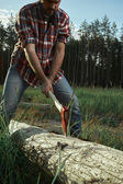 Bearded Lumberjack cut a Tree — Stock Photo