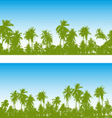 Palm tree — Stock Vector