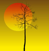 Dead tree — Stock Vector