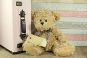 Teddy bear with vintage suitcase and blank tag — Stock Photo