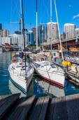 Две парусных шлюпки в гавани Сиднея — Стоковое фото