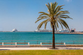 Mallorca embankment overlooking the cruise ships — Стоковое фото