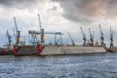 Cranes on a floating dock in Hamburg — Стоковое фото