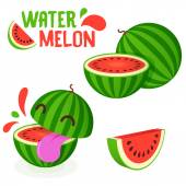 Yummy Watermelon vector fruit simple minimal icon illustration isolated on white — Vetor de Stock