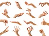 Collection of isolated woman's hands — Stock Photo
