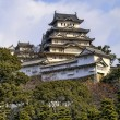 Majestic Castle of Himeji in Japan. — Stock Photo #55737565