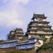 Majestic Castle of Himeji in Japan. — Stock Photo #55737567