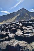 Picture of Giant's Causeway in Northern Ireland. — Stock Photo