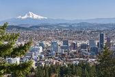 Beautiful Vista of Portland, Oregon — Stock Photo