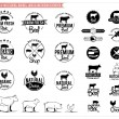 Vintage meat logos, badges, labels and design elements — Stock Vector #60073559
