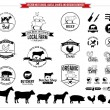 Vector meat logos, labels, charts and design elements — Stock Vector #63202243
