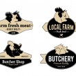Set of Vintage Retro Labels, Logos, Design Templates for Meat Stores and Products — Stock Vector #68772239