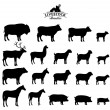 Vector Livestock Silhouettes Isolated on White — Stock Vector #68774597