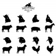 Vector Farm Animals Silhouettes and Icons Isolated on White — Stock Vector #71256293