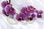 Orchid flowers and pearls on a wedding dress. — Stockfoto