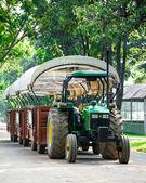 Green tractor vehicle in farm Chokchai — Stock fotografie