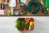 Bahçıvanın araçları — Stok fotoğraf