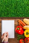 Farmer's notebook with vegetables — Stock Photo