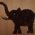 Coffee elephant — Stock Photo #55717145