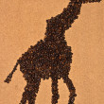 Cofee giraffe — Stock Photo #55717335