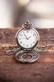 Pocket watch  — Stockfoto
